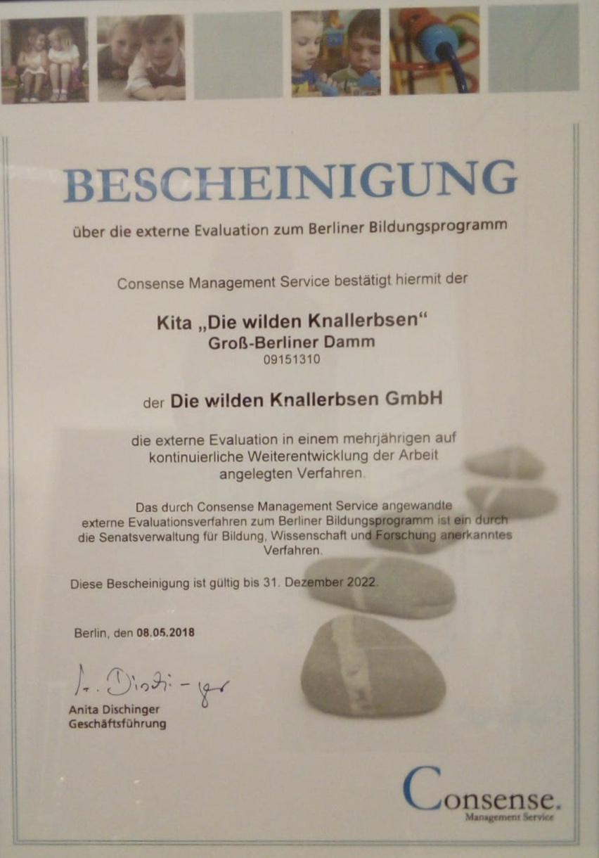 Externe Evaluation GBD